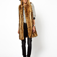 Fur Sleeveless Coat