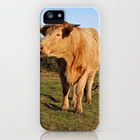 iPhone Cases by Sean Foreman | Society6