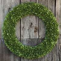 LIT BOXWOOD OUTDOOR COLLECTION