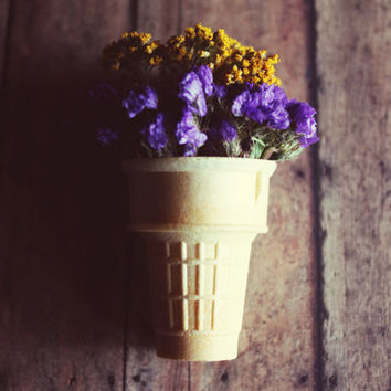 flowers, Spring, ice cream cone, fine art photography