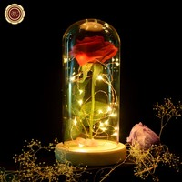 """Beauty and the Beast"" Red Silk Rose and Led Light / Fallen Petals in a Glass Dome"