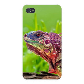 Apple Iphone Custom Case 4 4s Plastic Snap on - Iguana Lizard Head Closeup