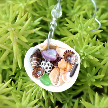 Hawaii Seashell Ornament - Shell Christmas Ornament - Hawaiian Holiday Decor - Mele Kalikimaka Shell Ornament - Christmas Decor from Hawaii