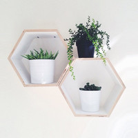 White Hexagon Bookshelf