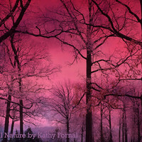 "Nature Photography, Dreamy Fantasy Dark Pink Surreal Woodlands, Haunting Forest Dark Pink Nature Photo 9"" x 12"""
