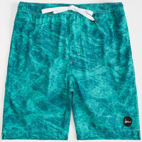 Imperial Motion Marbs Mens Volley Boardshorts Aqua  In Sizes
