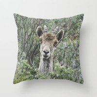 """Hello"". Ibex. Retro wildlife. Throw Pillow by Guido Montañés"