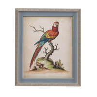 Bassett Mirror Company Edwards Parrots I Framed Art