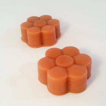 White Tea Highly Scented Wax Melts (2 pack) - Wax Tarts - Home Fragrance - Hand Poured - Wax Cubes - Candle Melt - Calming Spa Tea Scent