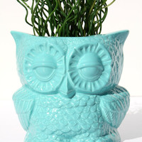 Ceramic Owl Planter in Tiffany Blue, From 1970s Vintage Mold, READY TO SHIP