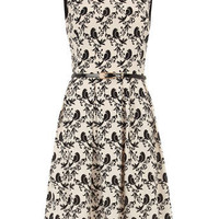 Ivory and black bird print circle dress - View All New In - What's New - Dorothy Perkins