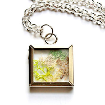 Terrarium Necklace Real Moss Pendant Nature Jewelry Silver Plated Chain Square Glass Silver Tone Frame