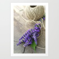 Lavender bouquet Art Print by tanjariedel