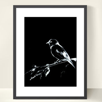 Bird Drawing Art Print - Bird Art - Minimalist - White on Black - Bird Art - Bird Illustration - Bird Drawing - Modern Wall Art