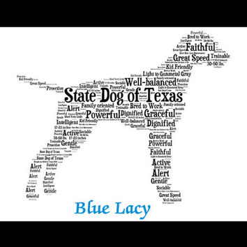 Blue Lacy, Custom Blue Lacy, Personalize Blue Lacy, Blue Lacy Art Print, Blue Lacy Memorial, Pet Gift, Print, Dog Art, Pet Art, Custom Dog