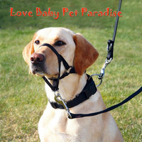 Lovely Pet Paradis Dog Functional Training Mouth Muzzle Contral Stop Barking Collar Good for Hunting Carrying Pet Supplies