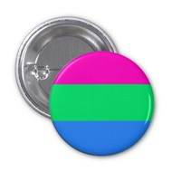 Polysexual pride flag 2 inch round button