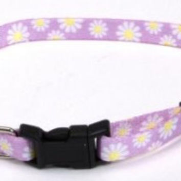 Li'l Pals Adjustable Collar - Pink with Daisies