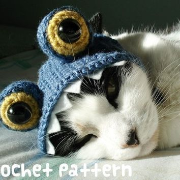 crochet pattern - monster pet hat - halloween costume cat blue dragon amigurumi kawaii small dog chihuahua disguise - (instant download)