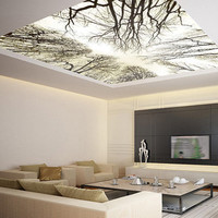 """Ceiling STICKER MURAL sky trees forest airly air decole poster 93x93""""(236x236cm)"""