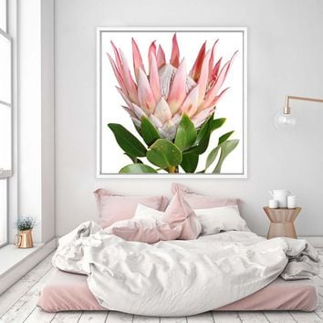 Protea Pink King Flower Posters and Prints Canvas Painting South Africa Wall Art pictures Paintings for living Room Home Decor