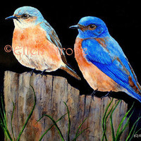 NOTE CARD, Blue Birds, Fence Post, Birds, Blue, Blank Note Cards, Home Decor, Lodge decor, Cabin Decor, Paper Goods