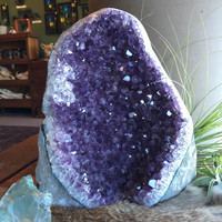 "Large Amethyst Geode 9"" Tall"