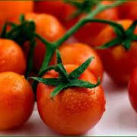 BULK 100 Seeds, Large Red Cherry Tomato, Grown on Our Farm, Cheapseeds