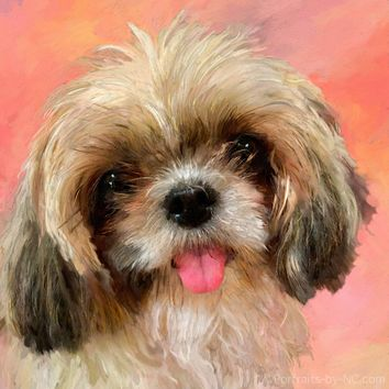Shih Tzu Dog Pet Portrait #732 - Digital Portrait