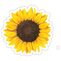 'sunflower ' Sticker by elizabethorrr