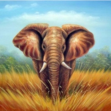 African Elephant Canvas Wall Art