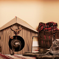 Cat Playhouse Cardboard Cabin | Cat Beds | Cat Products | Omlet