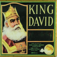 King David - Vintage Citrus Crate Label - Handmade Recycled Tile Coaster