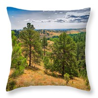 """Looking Through Custer State Park Throw Pillow for Sale by John Bailey - 14"""" x 14"""""""
