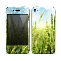 The Sunny Wheat Field Skin for the Apple iPhone 4-4s