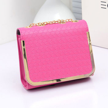 Women Classical Chic Small Bag On Sale = 4432127364