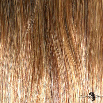 "16"" Clip In Remy Hair Extensions: Chestnut Brown/ Blonde No. P6-27"