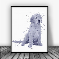 Golden Retriever, Black and White Art Print Poster