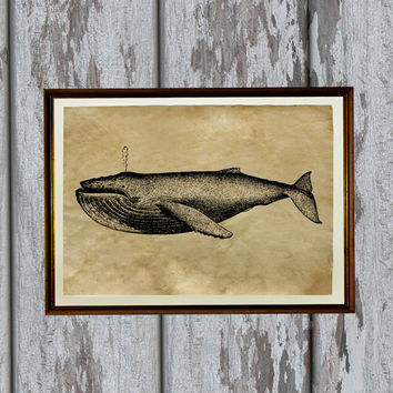 Humpback whale print Old paper Antiqued decoration vintage looking 8.3 x 11.7 inches