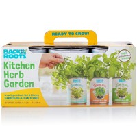 Kitchen Herb Garden (Can 3 Pack) - Organic Basil, Mint, Cilantro