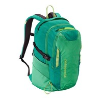 Patagonia Refugio Pack 28L | Nettle Green