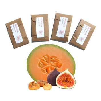 Figgy Melon Scented Mini Sachets - Summer Nature Inspired Favors - Modern Home Fragrance - Candle Sachet - Minimalist Rustic Orange Brown