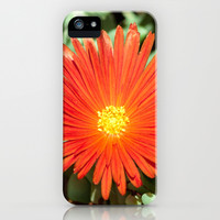 Sunny Red iPhone & iPod Case by Ia Loredana