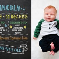 Baby's First Year Photo Prop Sign - Set of 12 Monthly Photo Prop