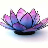 Capiz Shell Lotus Candle Holder in multicolor