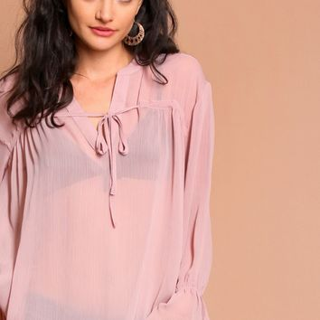 Hint Of Blush Sheer Blouse | Threadsence
