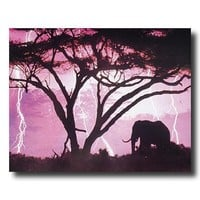 African Elephant In Lightning Animal Wildlife Wall Picture Art Print