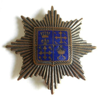 Vintage AGNEW Enamel and Copper Scottish Heraldic Brooch Pin Family Crest Shield Coat of Arms 1950s