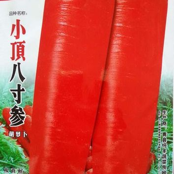 (Mix minimum order $5)1 original pack 500+pcs eight  inches ginseng carrot seeds carrot seed potted vegetable seed free shipping