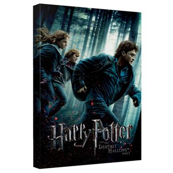 Harry Potter - Deathly Hallows Part 1 Canvas Wall Art With Back Board